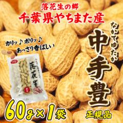 ポイント消化 送料無料 お試し平成29年産 新豆 からつき落花生 千葉県やちまた産 中手豊品種 60g×1袋 ピーナッツ