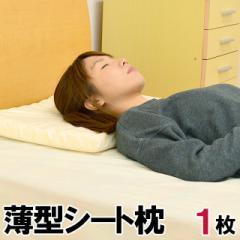 ■安眠館オリジナル商品■日本製 薄型シート枕 約35×50cm 高さ約4.5cm  ( 体圧分散 高反発 ストレートネック 肩こり)1枚単品
