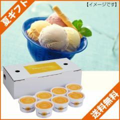 お中元 ギフト 送料無料 アイスクリーム ギフト 北海道 夕張メロンアイス/A-YBM のし可