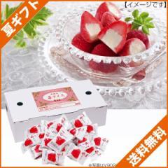 お中元 ギフト 送料無料 アイスクリーム ギフト 春摘み苺アイス/A-H36 のし可