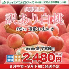【訳あり】 山形県産 白桃  約2kg 山形県産 もも ご自宅用 f15