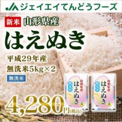 新米 山形県産 はえぬき 無洗米 10kg(5kg×2袋) 平成29年産