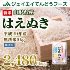 米 お米 山形県産 はえぬき 無洗米 5kg 平成29年産  ※注文から5〜10営業日前後で発送