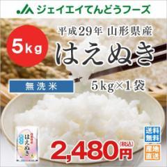 米 お米 山形県産 はえぬき 無洗米 5kg 平成29年産  ※注文から5営業日前後で発送