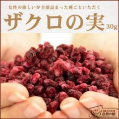 送料無料 ザクロの実 美容・健康におすすめのスーパーフード ザクロ ざくろ ドライフルーツ  フルーツ