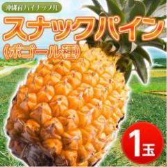 沖縄産 スナックパイン1玉 約600g※常温 ○