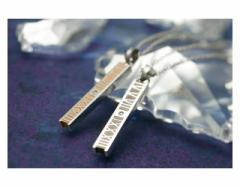 ペアネックレス ステンレス 2本セット カップル ダイヤモンド お揃い 送料無料 EVE-GPSD68STGN-68STRO