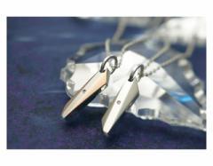 ペアネックレス ステンレス 2本セット カップル ダイヤモンド お揃い 送料無料 EVE-GPSD49STWH-49STRO