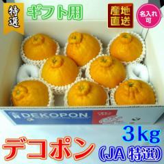 デコポン (JA選果) ギフト用 3kg 特選秀品 8〜10玉入り 糖度13度以上基準合格品
