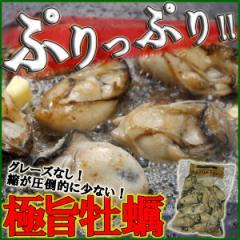 【播州赤穂/極旨牡蠣】デカプリオイスター500g (坂越カキ)《※冷凍便》