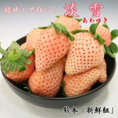 【送料無料】いちご 淡雪(あわゆき)約200g×2パック《M〜3Lサイズ》 見た目でビックリ!食べてビックリ![果物/イチゴ/苺][大阪冷蔵-f]
