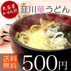 送料無料 お試し うどん 乾麺 約4-6人前(250g×2) 群馬県
