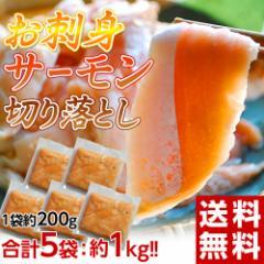 訳あり 鮭 サーモン 送料無料 解凍するだけ お寿司屋さんの「お刺身サーモン」大トロハラス部位 切り落とし 200g×5P 冷凍 ★
