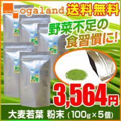 大麦若葉粉末(100g×5個セット) 激安 野菜不足 食物繊維 青汁 ダイエット サプリメント _JH _JD