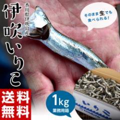 香川県産 大羽いりこ1kg 業務用 ※常温 送料無料