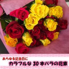 感謝を贈るバラの花束30/花束/バラ/レッド/イエロー/ピンク/限定/生花/プレゼント/贈り物/送料無料/母の日