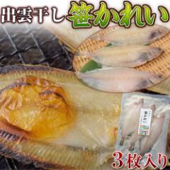 幻の高級魚 「笹かれい干物」 3尾(約130g) ※冷凍 ○