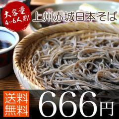 送料無料 蕎麦 そば 日本そば 約4〜6人前 250g×2 群馬県 赤城地方名産