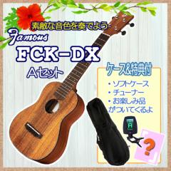 Famous(フェイマス)「FCK-DX」コンサート・ウクレレオススメ2点セット