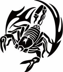 カッティングステッカー 〜 スコーピオン サソリ(蠍) トライバル ・11(左向き) 〜 車 バイク カッコイイ ワンポイント カスタム