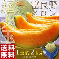 メロン 送料無料 北海道富良野産 超大玉 富良野メロン 化粧箱 1玉 約2キロ 常温 のしOK
