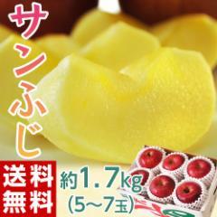 りんご リンゴ 送料無料 長野 安曇野産 サンふじ 約1.7キロ(5〜7玉)