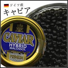 ドイツ産 キャビア 20g ハイブリットキャビア 送料無料 《※冷凍便》 お取り寄せ ギフト 食品 備蓄 父の日