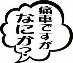 カッティングステッカー 車 バイク オシャレ カッコイイ ワンポイント カー【痛車ですがなにか? (2枚1セット)(TY)】【メール便】