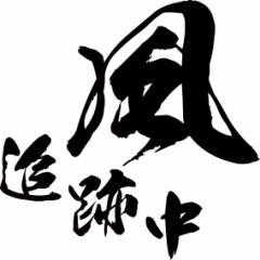 カッティングステッカー フィッシング カッコイイ カスタム 車 ケース カスタム【風 追跡中 (2枚1セット)・2(SP)】【メール便】