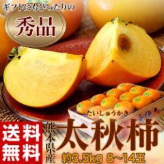 柿 送料無料 熊本県産「太秋柿」産地箱 秀品 8〜14玉 約3.5kg
