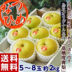 鳥取県オリジナル品種「なつひめ 梨」 鳥取県産 約2kg(5〜8玉) 送料無料 ※冷蔵