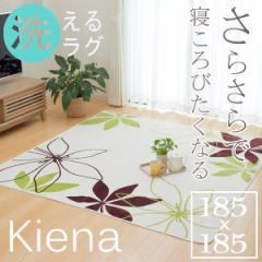 ラグ カーペット  2畳 洗えるラグ 送料無料「 WSキエナ 」【tm】約185×185cmホットカーペットカバー 2畳用 花柄 リーフ柄