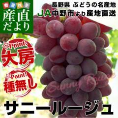 送料無料 長野県より産地直送 JA中野市 サニールージュ 2から4房 1.2キロ ※クール便 産直だより