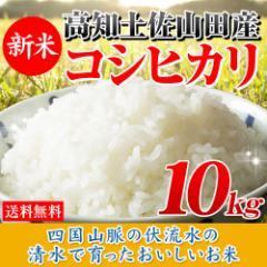 30年産 高知県産コシヒカリ10kg【5kg×2袋】 送料無料 北海道・沖縄は756円の送料がかかります。
