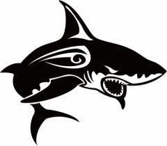 カッティングステッカー 車 オシャレ カッコイイ ワンポイント【シャーク(shark) サメ(鮫) トライバル ・1(右向き)】【メール便】