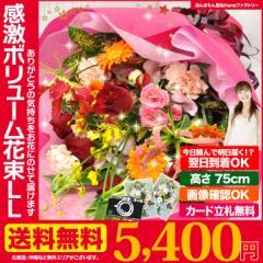 誕生日 の 御祝い に 誕生日 記念日 お祝い 花 ギフト に 感激おまかせLLサイズ 花束 ブーケ 送料無料