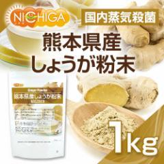 熊本県産しょうが粉末 1kg(スプーン付) 国内蒸気殺菌 生姜パウダー100% [02] NICHIGA ニチガ