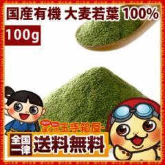 青汁 国産 有機 大麦若葉 100% 無農薬栽培100g 有機大麦若葉 粉末 食物繊維 ダイエット