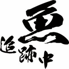 カッティングステッカー フィッシング カッコイイ カスタム 車 目立つ カスタム【魚 追跡中 釣り (2枚1セット)・2(F)】【メール便】