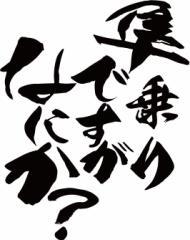 カッティングステッカー 車 バイク カッコイイ カスタム【隼乗りですがなにか?(スズキ・SUZUKI)(2枚1セット) (B)】【メール便】