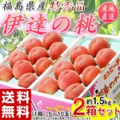 桃 もも お中元 福島 「伊達の桃」特秀品 約1.5kg×2箱 (1箱:5〜10玉)  常温 送料無料 のしOK