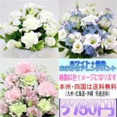 供花 ホワイト+各色 お供え用おまかせアレンジメント3,780円