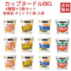 日清食品 カップヌードル big ビッグ 4柄×3個  12食 関東圏送料無料