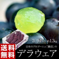ぶどう ブドウ 送料無料 山梨 勝沼産 デラウェア 2L 産地箱1箱:9房 (約1.3キロ) 冷蔵