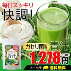 【ガセリ菌青汁】[メール便対応商品] 乳酸菌 野菜酵素 菌活 善玉菌 腸 サプリ ドリンク
