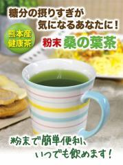 桑の葉茶 粉末 100g 【送料無料】