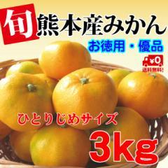 ご家庭用 極甘しおかぜ温州みかん 3kg 熊本産 お徳用優品(訳あり)サイズおまかせ 送料無料