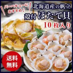 ホタテ ほたて 帆立 殻付ほたて貝 10枚入り 調理しやすい片貝でバター焼きやバーベキュー BBQ バーベキュー かに祭り 送料無料 冷凍便