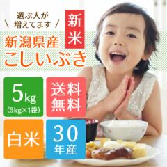 【30年産 新米】新潟県産こしいぶき 5kg(5キロ×1袋)【送料無料 ※沖縄を除く】米 5キロ 送料無料 お米 5kg 安い