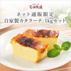 北海道 お土産 花畑牧場 ネット通販限定 自家製カタラーナ 1kgセット